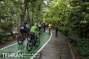 مرکز تهران در قرق دوچرخهها