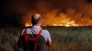تحقیق برای رمزگشایی سریال آتش سوزی بوستان های شهر ادامه دارد