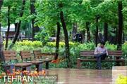 هیچ بوستانی در تهران تعطیل نیست
