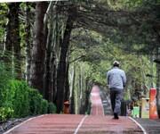بوستان های شهری، دهکده ورزش می شوند