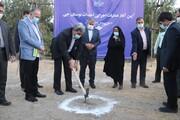 حناچی: ساخت بوستان در مناطق متراکم ارزشمندتر است