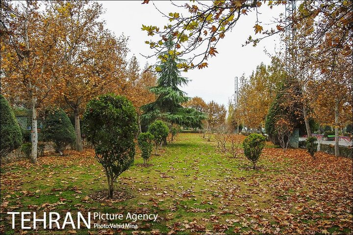 ایجاد ۸۸ بوستان و تملک ۱۸ باغ در شهر تهران