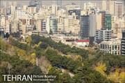 تهران،نماینده ایران در مجامع بین المللی است