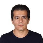 طهران؛ توتستان یا چنارستان