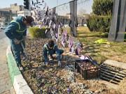 عملیات کاشت ۱۵هزار پیاز لاله در منطقه ۲۰ آغاز شد