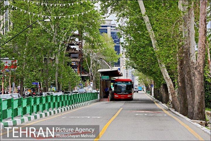 آشتی شهروندان با خیابان ولیعصر(عج)