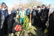 کاشت ۱۱۰ درخت به نام شهدا در بوستان آزادگان