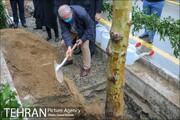 تهران نیازمند باغبانی و درختداری گسترده است