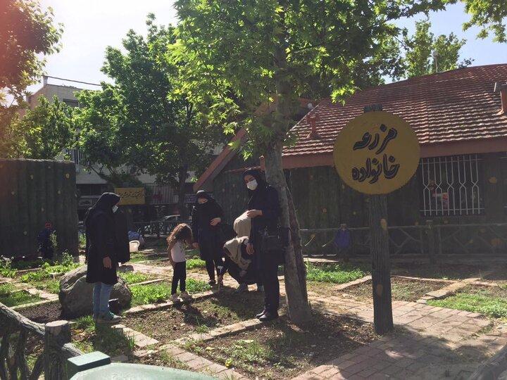 """کاشت و نگهداشت مشارکتی گل و گیاهان در """"پویش هم سایه هم"""""""