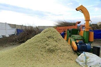 کارگاه بازیافت سرشاخههای درختان راه اندازی شد
