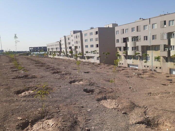 توسعه ۳۲ هزار متر مربع فضای سبز در منطقه ۱۵