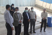 اجرای برنامههای هفته محیط زیست در ۱۴ محله قلب پایتخت