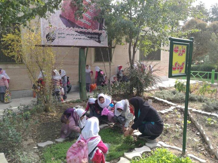 برنامه های روز ملی گل و گیاه ویژه کودکان جنوب تهران