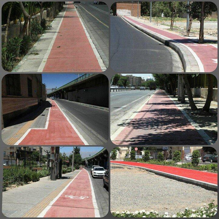 افزایش ۲۰۰ درصدی توسعه دوچرخه سواری