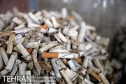 طرح پاکسازی پارک شهر تهران از فیلترهای سیگار