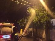 آبشویی بیش از ۹۳ هزار اصله درخت در شمال شرق تهران